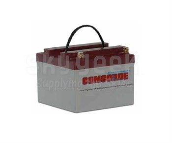 Concorde RG24-10 24-Volt General Aviation AGM Aircraft Battery
